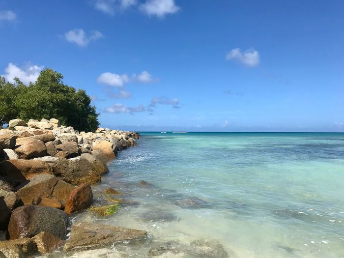 Island Dutch Caribbean Summer Travel Paradise Antilles Rocks Caribbean Sea Beauty In Nature Sky Horizon Over Water Tranquility Tranquil Scene Nature Scenics Water Cloud - Sky Day Idyllic Blue No People Outdoors Beach Tree