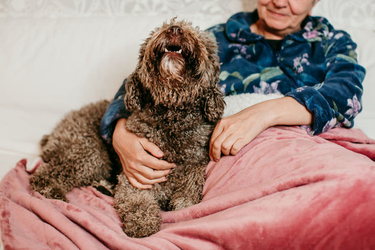 Midsection of woman with dog relaxing on bed at home