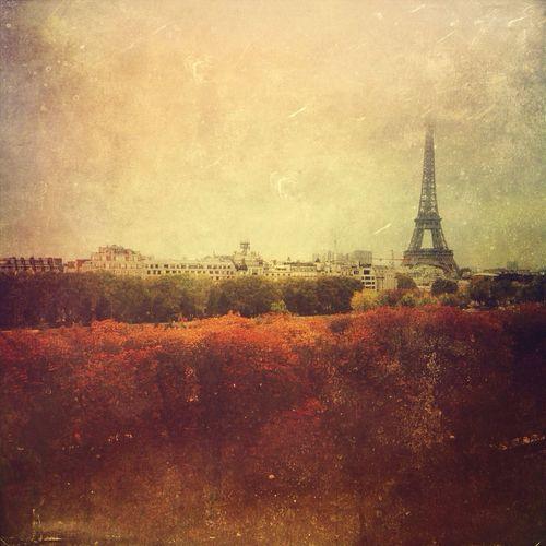 Autumn Colors Eiffel Tower Paris