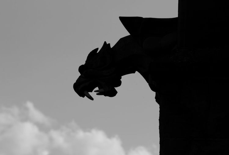 Black And White Black And White Photography Gargoyle Statue Silhouette Sky Architecture