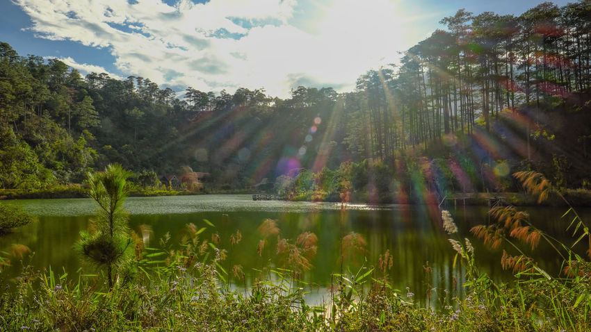 Nature Beauty In Nature Lake Outdoors Water Reflection Scenics Tree No People Day Sunlight Sky Dalat - Vietnam