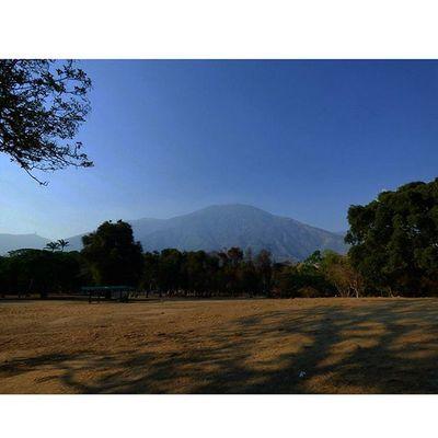 Venezuela Caracas ParqueDelEste Avila Mountain Humboldt Nature The Great Outdoors - 2016 EyeEm Awards Found On The Roll