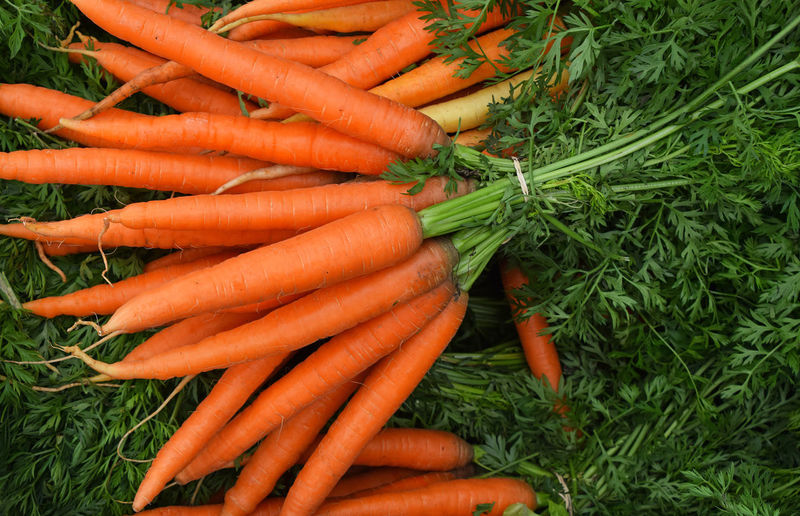 Fresh carrot bunches with green top on retail market stall Market Vegetarian Food Carrot Day Food Food And Drink For Sale Fresh Carrots Freshness Green Color Healthy Eating High Angle View Large Group Of Objects Market Market Stall Orange Color Organic Plant Raw Food Retail  Root Vegetable Vegetable Vegetables