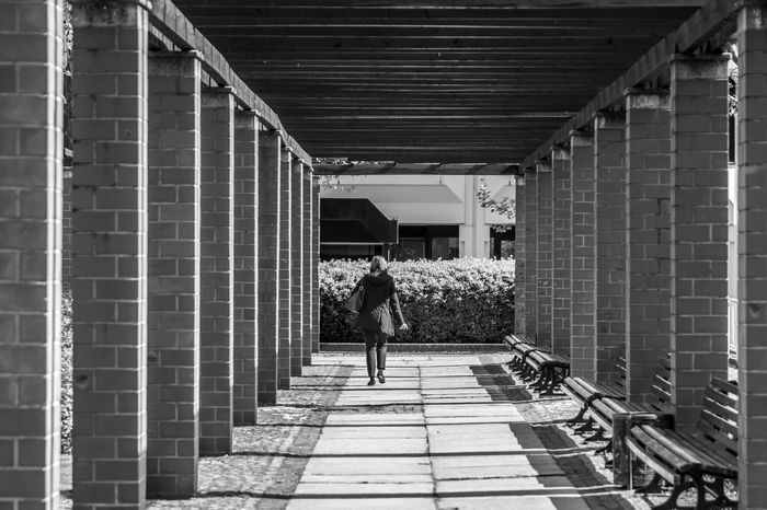 Black And White Black & White Pillars Brick Light And Shadow Arcade Colonnade Women Architecture Built Structure One Person Real People Building Exterior Rear View Lifestyles Day Direction Walking Full Length The Way Forward Sunlight Shadow Leisure Activity Outdoors Architectural Column