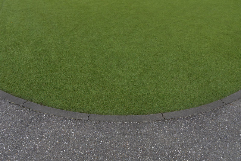 High angle view of grass