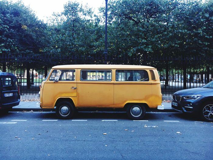Vanlife Yellow Color Vanlifers Combivans Van Land Vehicle Motor Vehicle Tree Road First Eyeem Photo