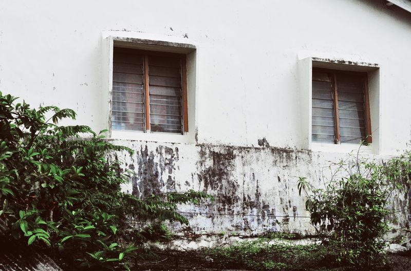 Low angle view of window on wall of house