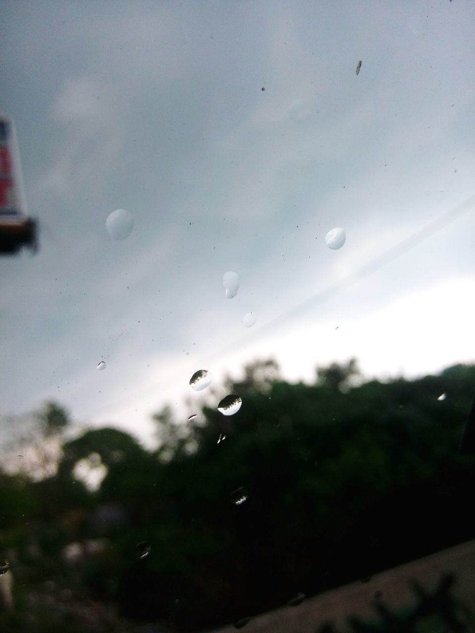 drop, water, wet, raindrop, window, no people, nature, sky, focus on foreground, close-up, day, outdoors, tree, beauty in nature