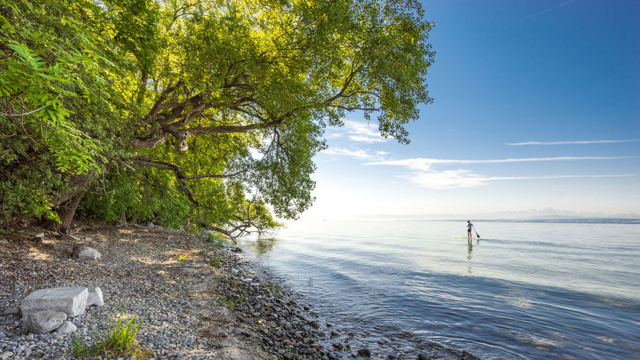 Beauty In Nature Day Nature No People Outdoors Scenics Sea Sky Tranquil Scene Tranquility Tree Water