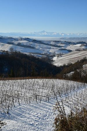 Langhe Hills And Valleys Mountains And Hills Vineyards In Winter Winter Frozen Travel Monviso Beauty In Nature Nature Scenics Sky Landscape Outdoors No People Tranquility Sunlight Day Travel Destinations Blue Clear Sky Cold Temperature