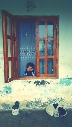 Georgia Lanchkhuti Guria Village Melancholy პატარა ადამიანი, რომელიც ელოდება ბაბუს. ემოცია, რომელიც ერთი მეორეს არ ემგვანება.