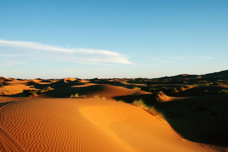 desert Of Merzouga morocco Sand Dune Desert Arid Climate Clear Sky Horizon Sand Accidents And Disasters Drought Rural Scene Sky Arid Landscape Horizon Over Land Safari View Into Land Orange Color East Africa EyeEmNewHere