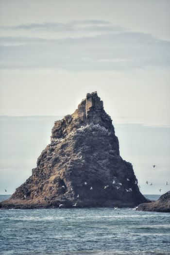 Jagged sea stack near ocean shore