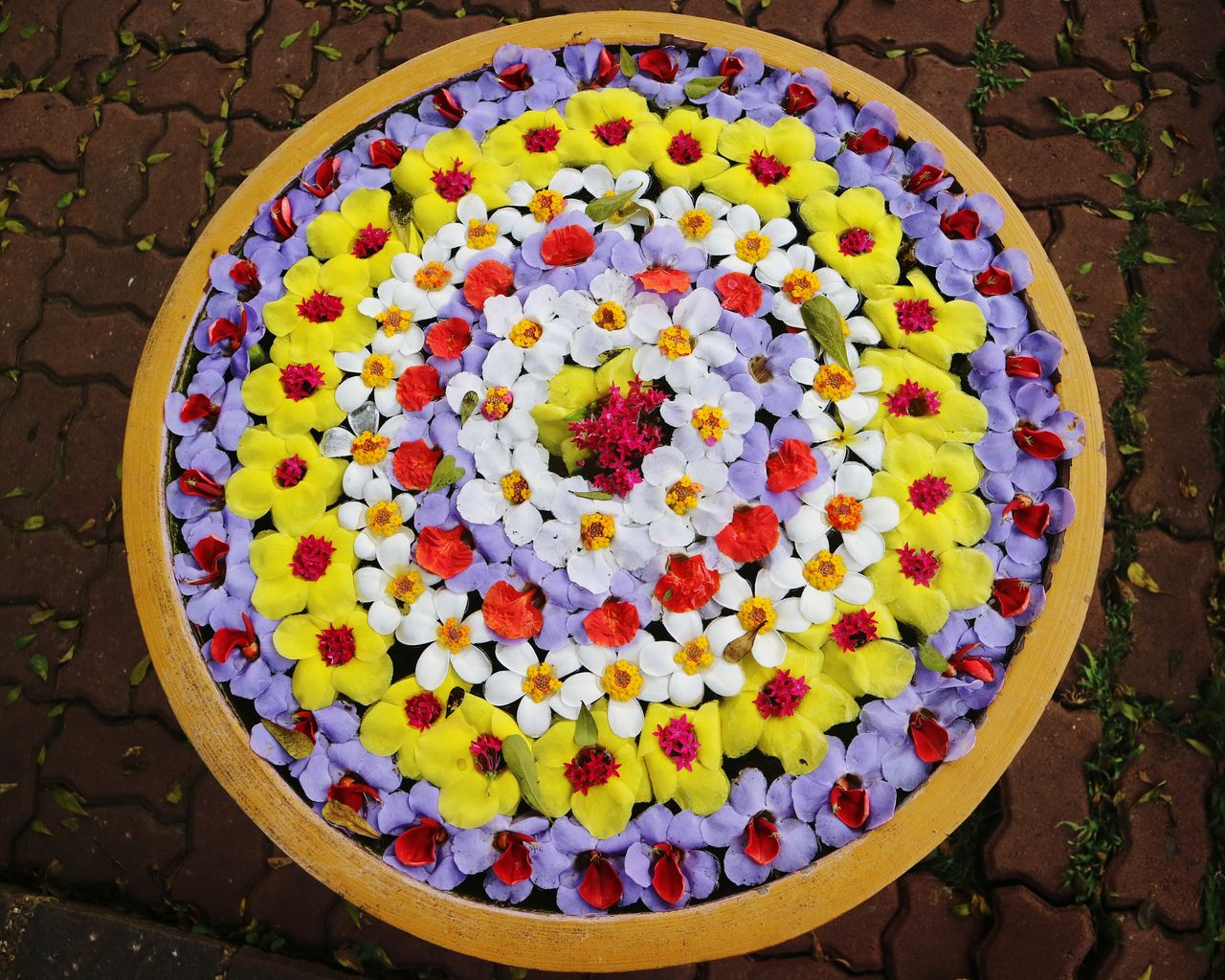 HIGH ANGLE VIEW OF MULTI COLORED FLOWERS IN CONTAINER ON STONE