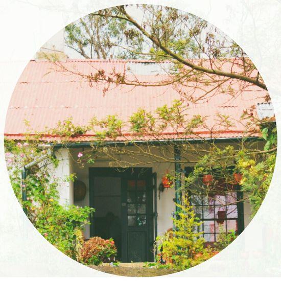 My Dream House Peaceful View Bliss Life's Simple Pleasures... Eyem Gallery The Week On EyeEm