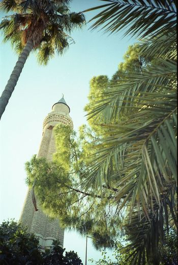 Analog Day Minaret Outdoors Summer The Great Outdoors - 2016 EyeEm Awards Travel Destinations Tree Turkey Vacation