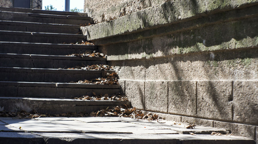 Autumn on the stairs Architecture Autumn Bridge Building Exterior Built Structure Day Fall Nature No People Stairs The City Light