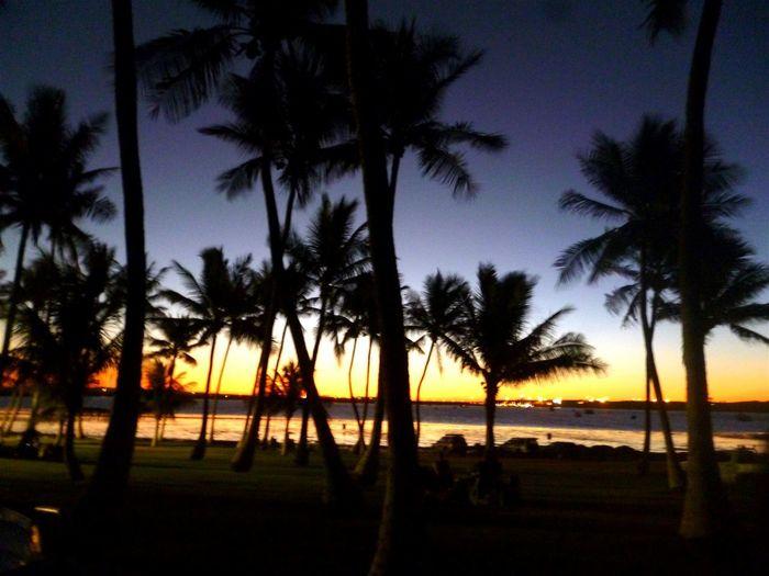 Australia WestCoast West Australia Palmtrees Sunset Beautiful Day Beautiful Sky Sky Landscape Relaxing Enjoying Life Traveling Enjoying Life Have A Nice Day♥ Dampier