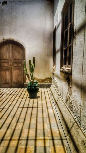 Austerity. Hello World Taking Photos Eye4photography  Hdr Photography Old Buildings Oldtown Old Architecture Cactus Mobile_photographer Sunny Day Minimalist Eye Em Best Shots Sunny Wall - Building Feature Cool Streetphotography Fueteventura