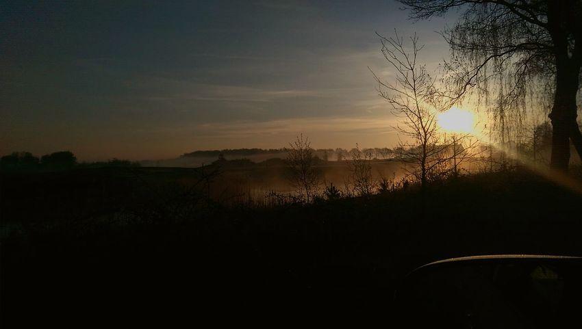 Misty morning. Foggy Foggy Morning Sunrise