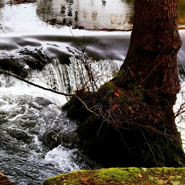 Water River Riverside Waterfall Cascadas Rios De España Rios Y Piedra Arboles Treescollection Water Falls