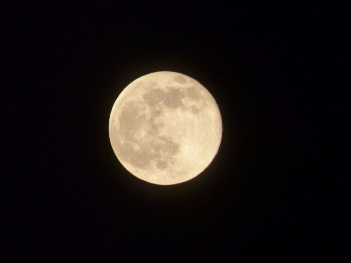My Original Photography Made By Me Using a Lumix Fz72 Good Times First Kiss Of My Life under this Moon
