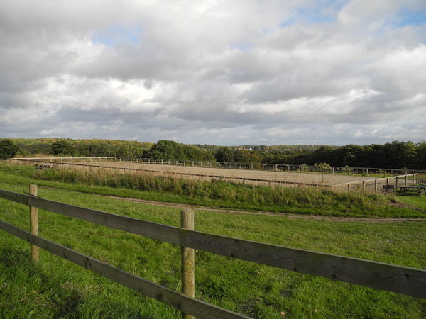 Birkerød countryside on the island of Zealand in Denmark - Field Rural Scene Agriculture Farm Tranquil Scene Landscape Crop  Scenics Fence Sky Tranquility Grass Growth Beauty In Nature Cloud - Sky Nature Cloudy Plant In A Row Cultivated Land Birkerød Zealand Denmark