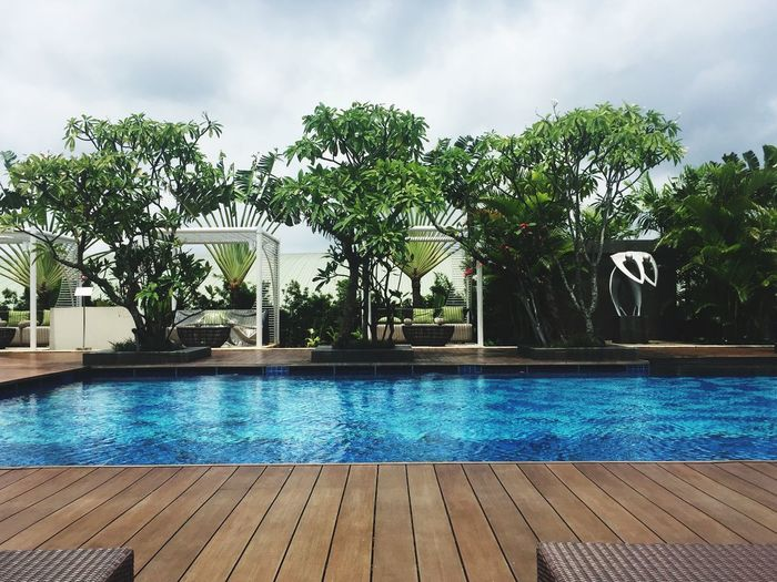 Outdoor swimming pool Pool Club Outdoor Living Hotel Swimming Pool Water Poolside Tourist Resort Tree Luxury Vacations Luxury Hotel Palm Tree