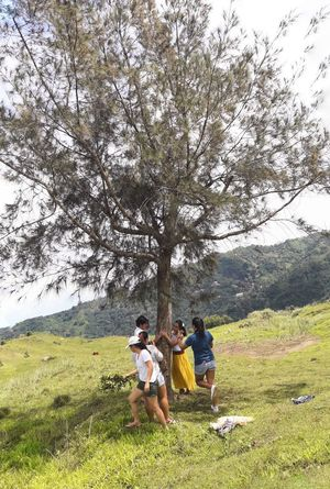 Connected By Travel Grass Togetherness Field Nature Tree Leisure Activity Growth Outdoors Day Men Women Beauty In Nature Sitting Real People Vacations Landscape Sky Adult Bonding Childhood