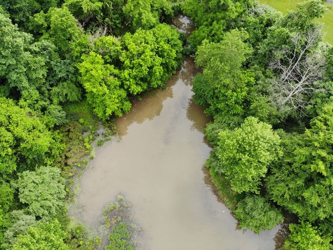 Mavic Air Tourism Destination Aerial View Aerial Shot Aeriel Photo Dronephotography Textured  Trees Treelines Forest Photography Forest Texture Green Nature Photography Tree Water High Angle View Plant Green Color Grass Sky Flood Standing Water Calm Lakeside Sandy Beach Waterfront Countryside Lush - Description Lush Foliage