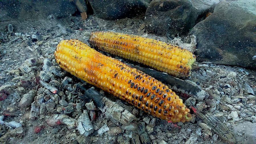 Fried corns on burning ashes Yellow Close-up EyeEmNewHere Corn Burning Ashes Foodphotography Food Outdoors