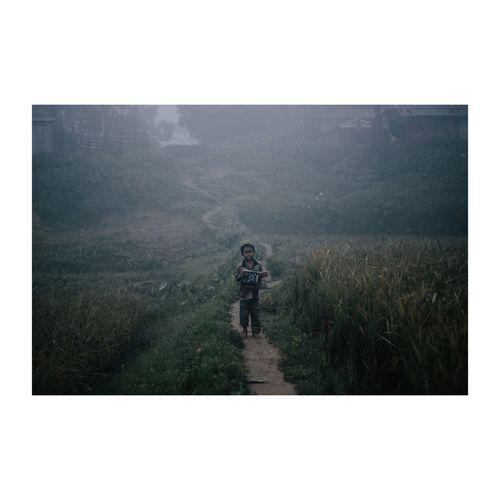 Rear view of a man walking on landscape