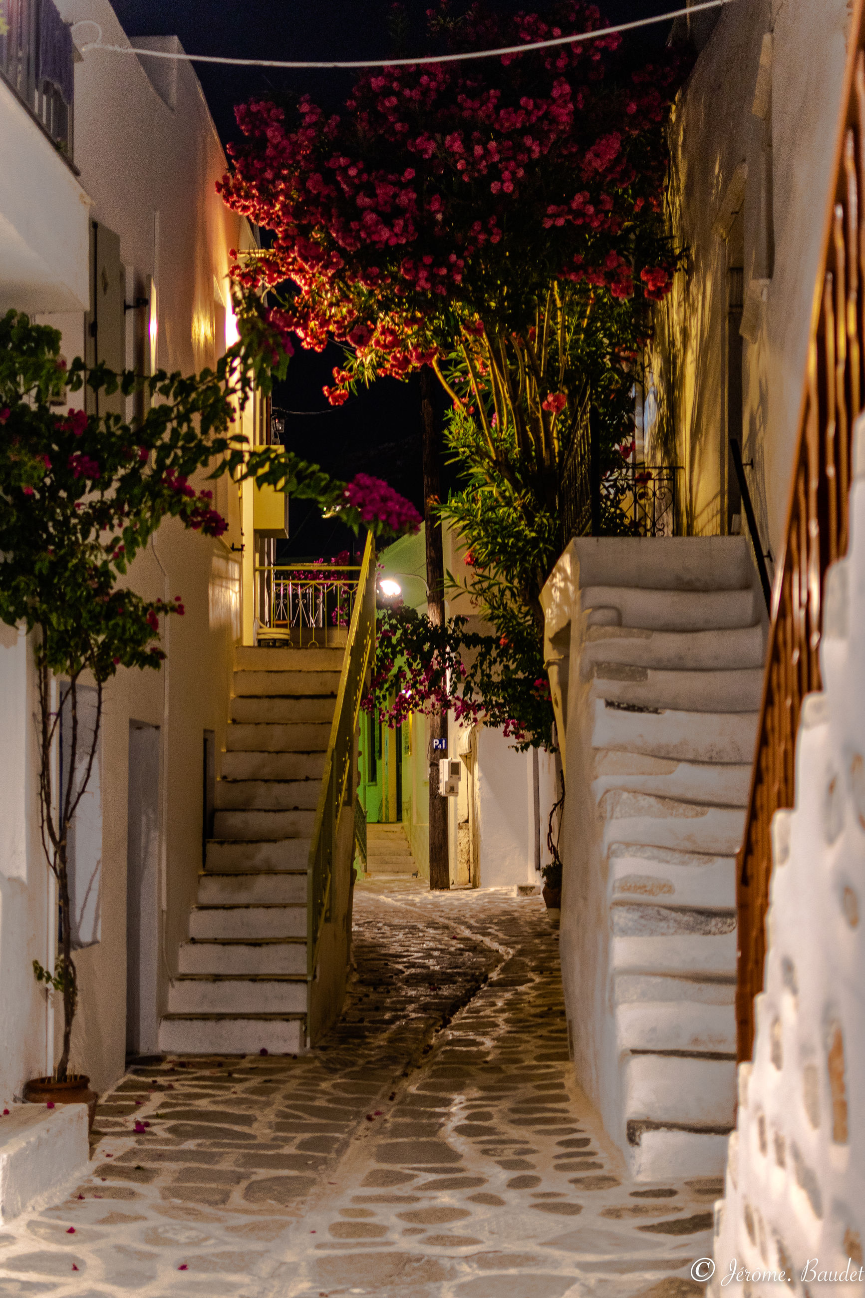 architecture, plant, built structure, building exterior, building, nature, staircase, illuminated, no people, night, tree, outdoors, house, flower, potted plant, growth, footpath, flowering plant, steps and staircases, residential district, flower pot, luxury, alley