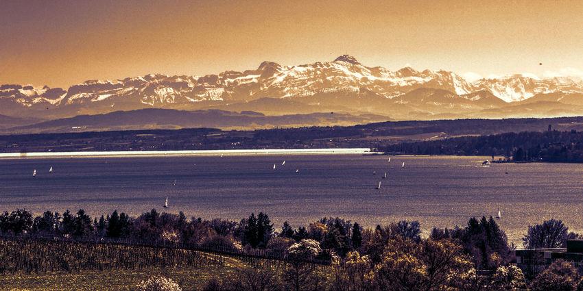 Lake Constance - Bodensee Bodensee Bodenseebilder Alps Mountain Range Mountain Landscape
