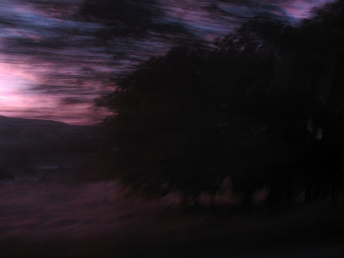 Background Abstract Blurred Motion Long Exposure Nature Silhouette Sky And Clouds Sunset Trees