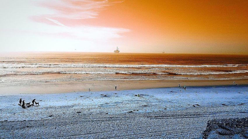 Scenics Landscape Beach Sea Horizon Over Water Animal Themes Thewaythetruththelife Godrules Seeing The World Differently Chemtrails GeoEngineering TheChangeOfTimes Fakesun Dramatic Sky Dogbeach Goldenwest Sky Orange Red Sand & Sea Oilrig
