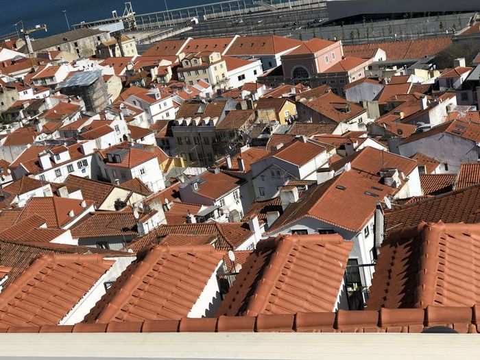 View across red rooftops in Lisbon, Portugal Lisbon Portugal Roof Architecture Building Built Structure Building Exterior Residential District High Angle View Day House Roof Tile Sunlight City No People Outdoors Town Brown Nature Community TOWNSCAPE Apartment