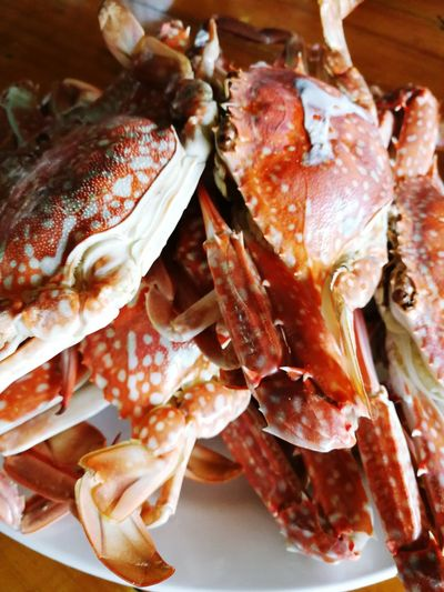 Seafood Food And Drink Freshness No People Healthy Eating Indoors  Pink Crab Close-up Day Crab Boil Horse Crab Steamed Crab