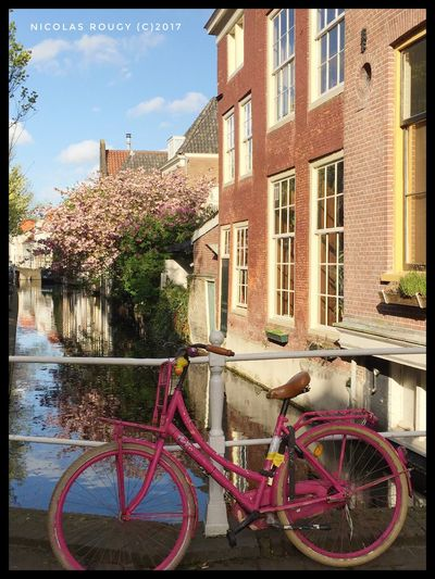 Building Exterior Architecture Built Structure Bicycle Transportation Mode Of Transport Day Outdoors Land Vehicle No People Window House Residential Building Stationary City Sky Tree Water Pink