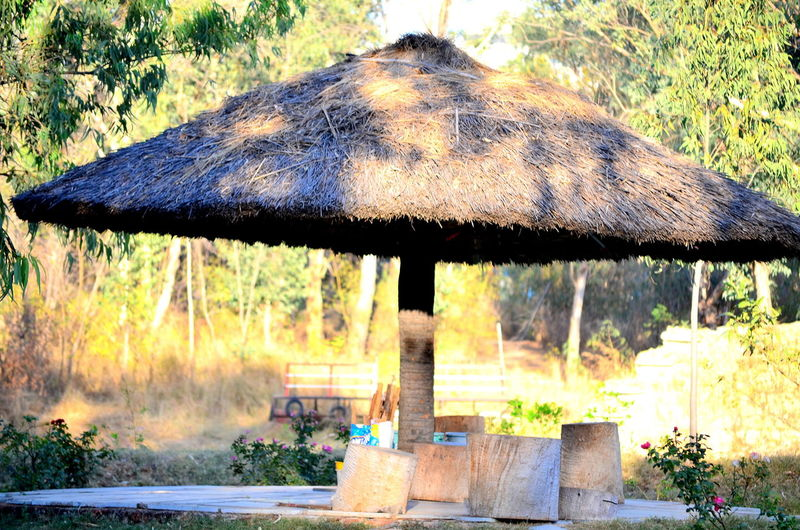 Beauty In Nature Built Structure Hut Nature No People Outdoors Place To Sit Reflection Sit Out Sitting Outside Tranquil Scene Tree Wood Wood - Material