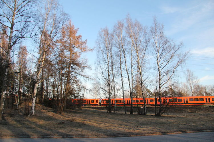Train By Trees Against Sky
