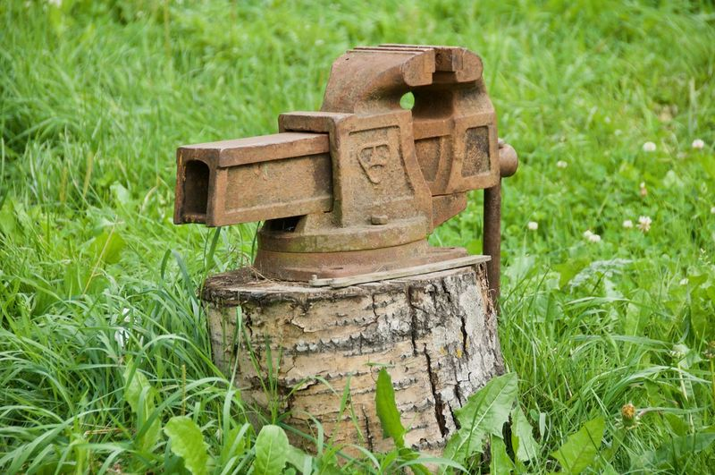 Green Color Grass Cuntryside Cuntry Tool Iron Iron Tool Old Vice Vice Gripe Metal Industry Rusty Grass Close-up Tree Stump