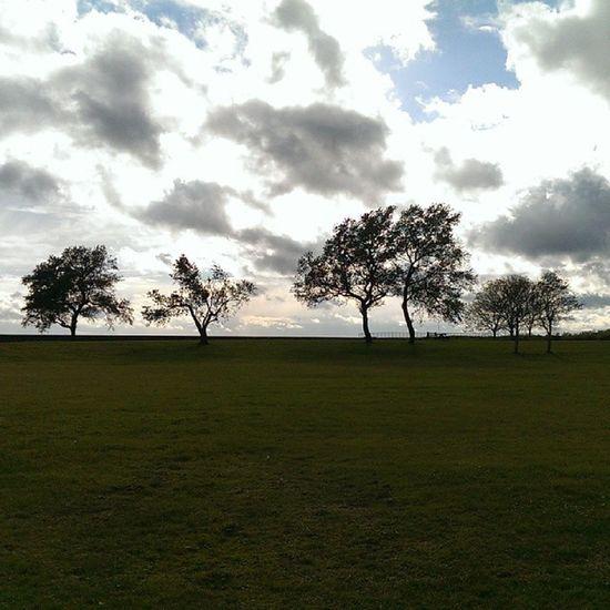 Burghpark Caister Caisteronsea Tree clouds