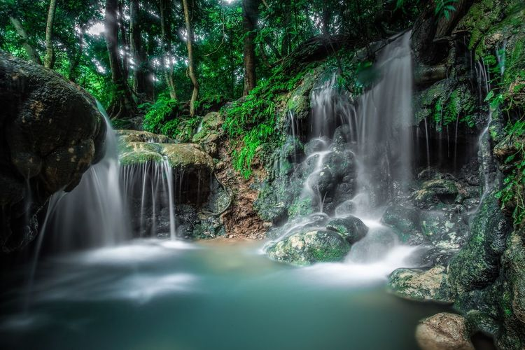 Waterfall Tree Water Waterfall Tree Motion Plant Scenics - Nature Beauty In Nature Long Exposure Nature Forest Splashing No People Land Rock - Object Solid Outdoors Rock Rainforest Blurred Motion Flowing Water