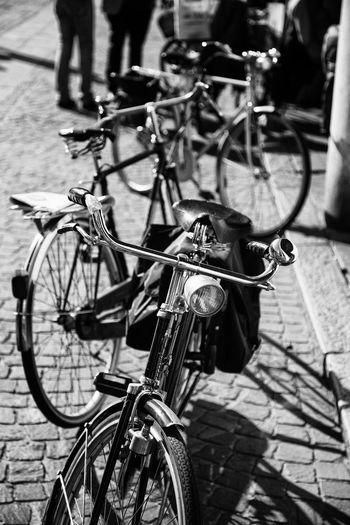 Avanti Bicycle Bikes Black And White Blackandwhite Photography Day Focus On Foreground Handlebar Mantova Mode Of Transport No People Old Fashioned Outdoors Retro Styled Sadle Sunshine Transportation Transportation