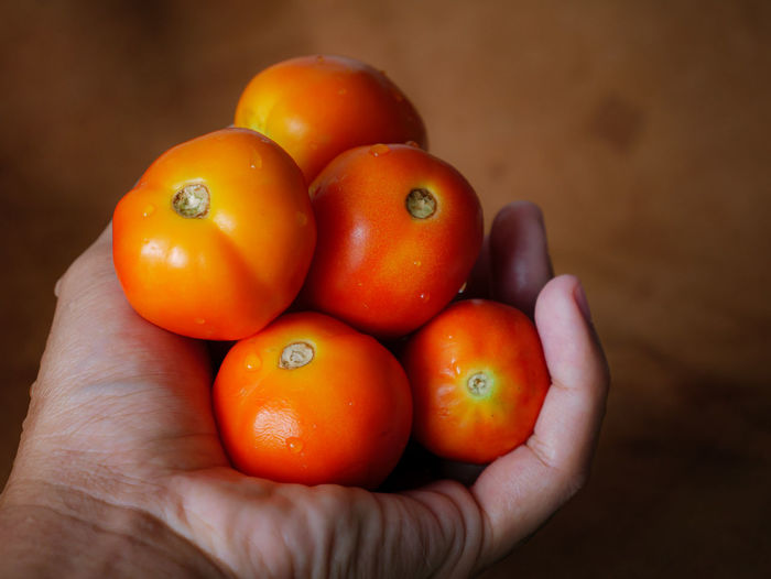 Close-up of hand holding orange tomatoes