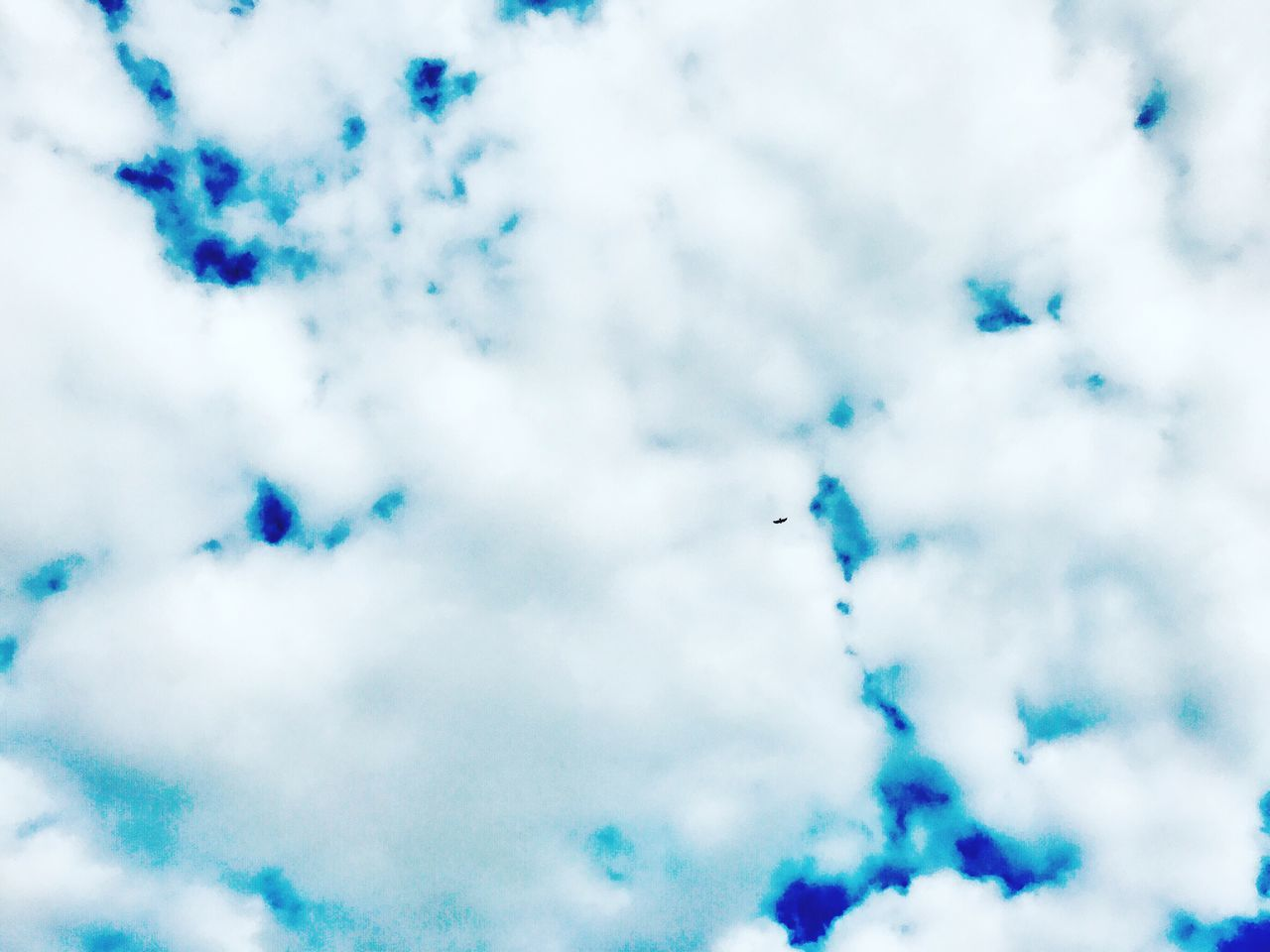 cloud - sky, sky, low angle view, nature, beauty in nature, cloudscape, sky only, day, blue, outdoors, backgrounds, no people, scenics, bird