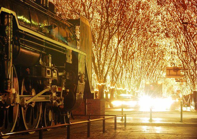 Illumination Sendai 仙台 光のページェント Steam Locomotive 写真好きな人と繋がりたい 写真撮ってる人と繋がりたい ファインダー越しの私の世界 Nikon Nikon D80 First Eyeem Photo Sendai 光のページェント in Sendai-shi , Japan