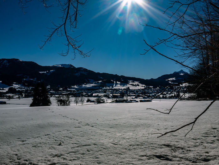Tree Sky Snow Nature Land Winter Cold Temperature Plant Beauty In Nature Tranquility Sunlight Landscape Scenics - Nature Tranquil Scene Sun Environment No People Bare Tree Sunbeam Outdoors Lens Flare Bright Snowcapped Mountain