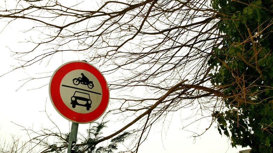 Verkehrsschild Verkehrszeichen Schild Tree Road Sign Branch Bare Tree Communication Sky Do Not Enter Sign Forbidden Stop Sign